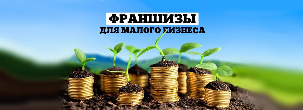 Каталог франшиз для малого бизнеса 2021 года